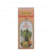 buy Vyas Charma Roga Tail in Delhi,India