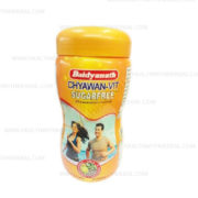 buy Baidyanath Chyawan – Vit Sugar Free (Chyawanprash Avaleha) in Delhi,India