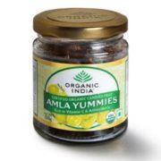 buy Organic India Amla Yummies 100 gm in Delhi,India